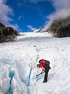 Tourguide am Fox Glacier